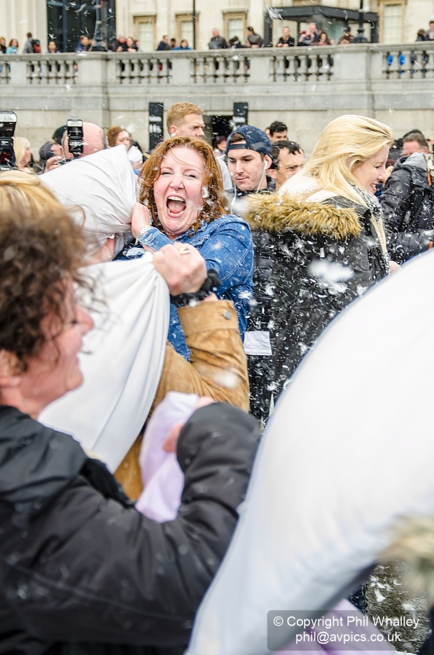 DSC_4415-PillowFight-4-4-15-PhilWhalley