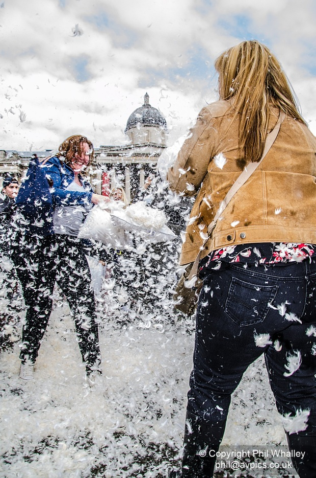DSC_4427-PillowFight-4-4-15-PhilWhalley